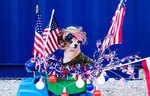 The 12 Most Patriotic Dogs Winning The Fourth Of July