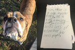 Good Boy Re-Homed After He Was Left Behind With A Touching Note