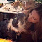 Kate Beckinsale's Cat Is The Cutest, Most Ferocious Dinosaur