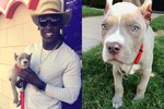 This NFL Player's Puppy Was Kidnapped & You Won't Believe The Details