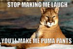 Just 56 Hilarious Animal Puns That You Need To See Right Now