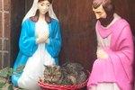 Grumpy Sourpuss Caught Sitting On Baby Jesus In Hilarious Nativity Scene Photo