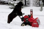 Dog Pushing Snow Blower Is Living In The Year 3018