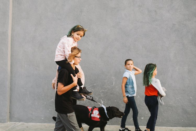 Sniffing Out Disease: How A Dog Named Moxie Is Giving A Little Girl A New Leash On Life